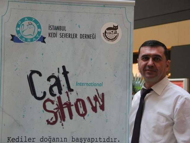 WinPet Cat Show